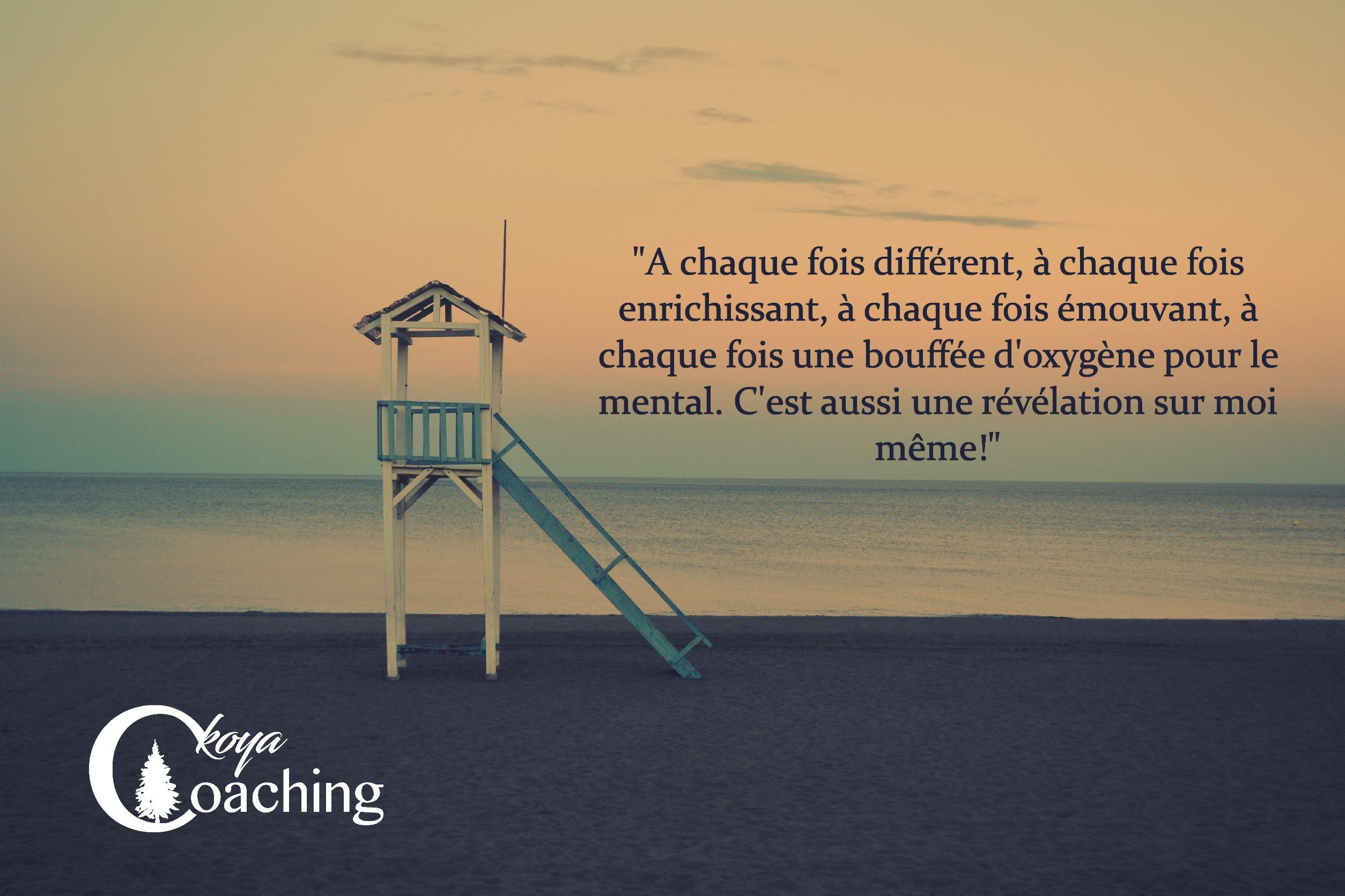 Mon Parcours Ariane C'Koya Coaching fre-sonneveld-1771-unsplash